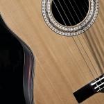 Lineu Bravo Luthier: 7 Cordas Aço modelo Rogério Caetano